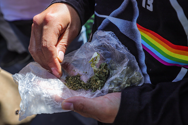 Debate sobre despenalización de la marihuana avanza en el Senado