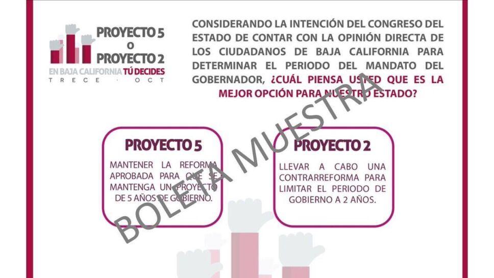 boleta muestra.jpg