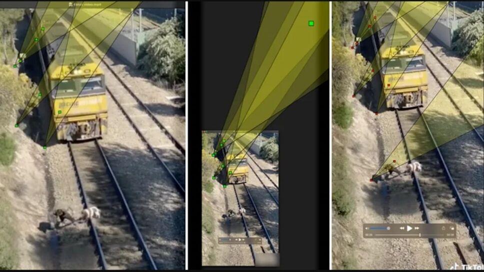 Perrito, vías, tren b.jpg