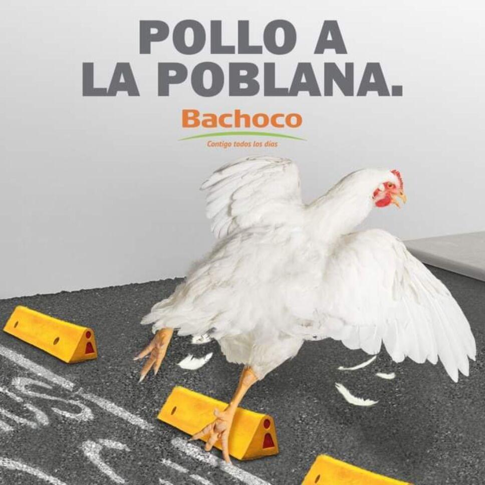 Pollo a la poblana Bachoco.jpg