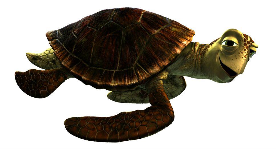 Crush, tortuga, Buscando a Dory