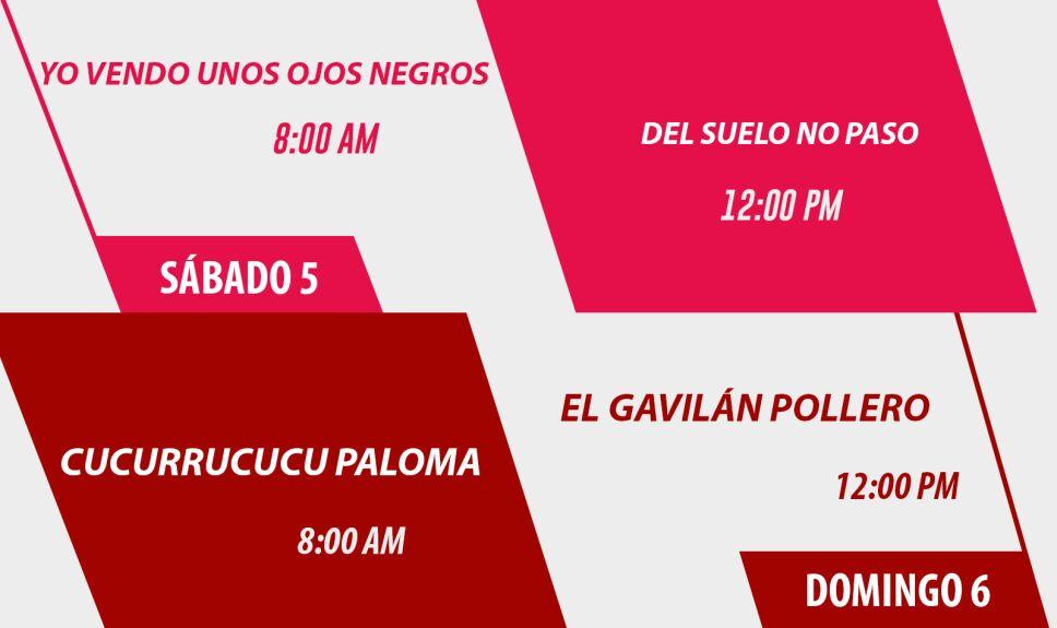 agenda13 5y6