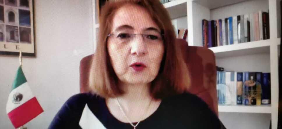Luz María de la Mora, subsecretaria de economía.jpg