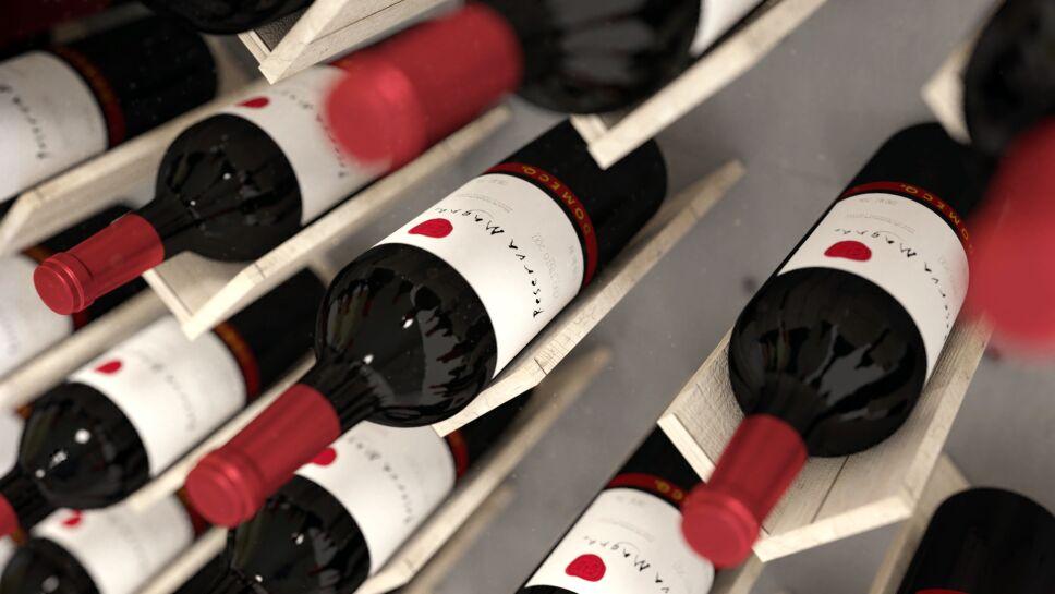reserva magna vino tinto domecq valle de guadalupe
