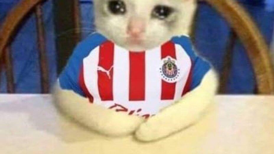 Los memes contra Chivas.jpg