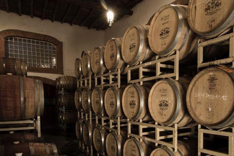 Casa Madero: tradición e innovación. Claves del éxito para mantenerse en el mercado vinícola por 424 años