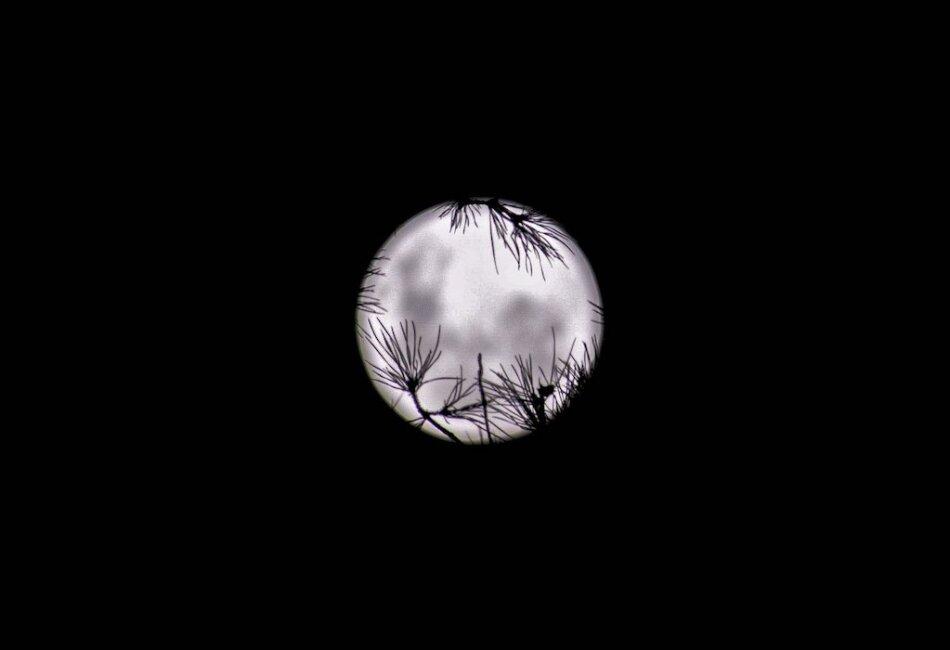 superluna de abril foto