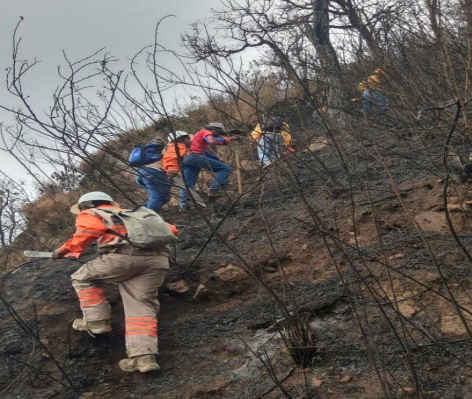 300 Brigadistas combaten incendio en el Cañón del Sumidero.png