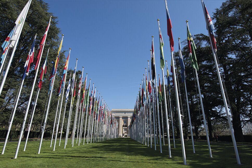 "La ""Allée des drapeaux"" (""Camino de las banderas""), sede de la ONU, Ginebra/Foto: ONU/Jean Marc Ferré"