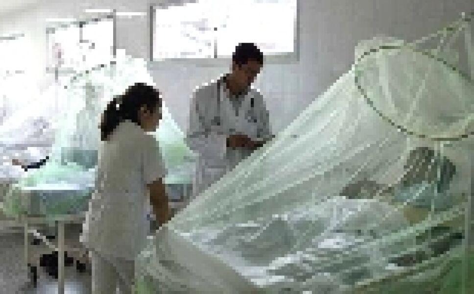 Descarta Paraguay ocultamiento de casos de dengue
