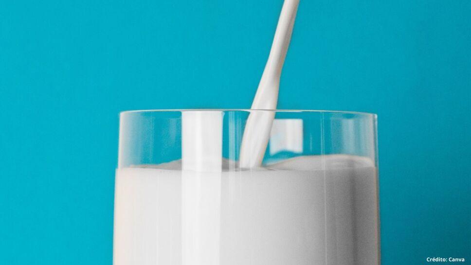 5 leche vegetal sustitutos de leche.jpg