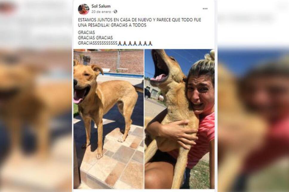 publicación de Sol con su perrito.jpg