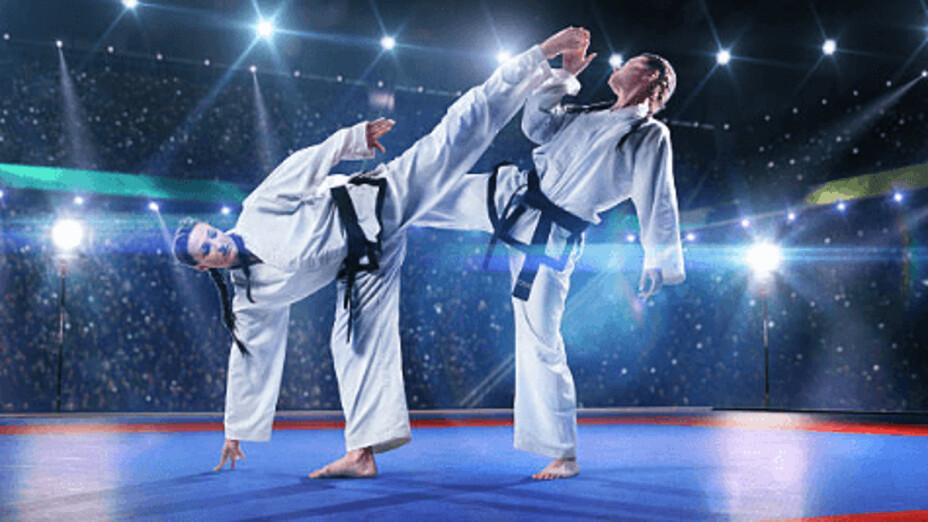 Karate Tokyo 2020.jpg