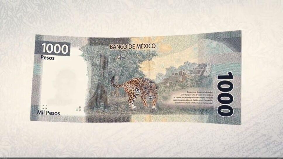 Reverso del nuevo billete de mil pesos con un jaguar y la Antigua Ciudad Maya