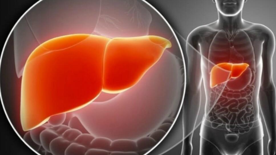 HEPATITIS C INT