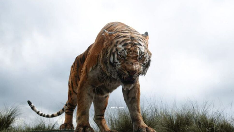 el-libro-de-la-selva-animales-4.jpg