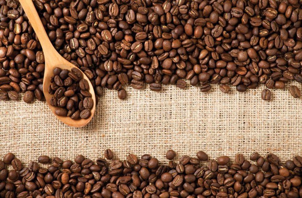 Los granos de café en realidad son huesos de fruta Foto Especial