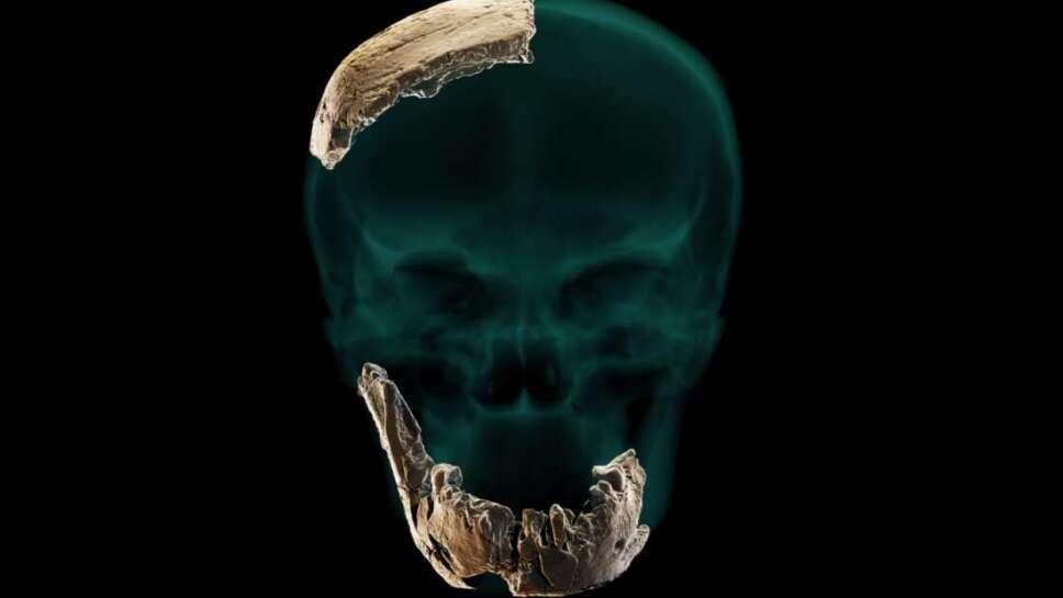 Fósil, humano, Israel.jpg