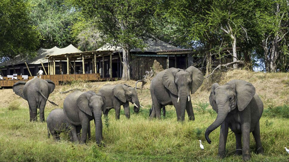 abu-camp-africa.jpg