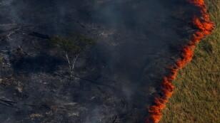 Desde hace días el fuego ha arrasado con miles de hectáreas de la Amazonía brasilera y boliviana.