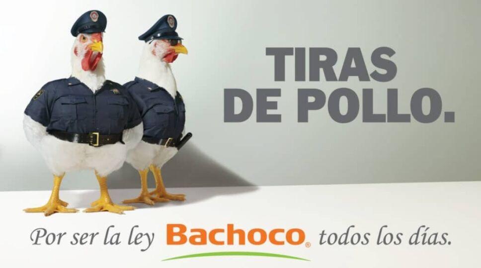 Tiras de pollo Bachoco.jpg