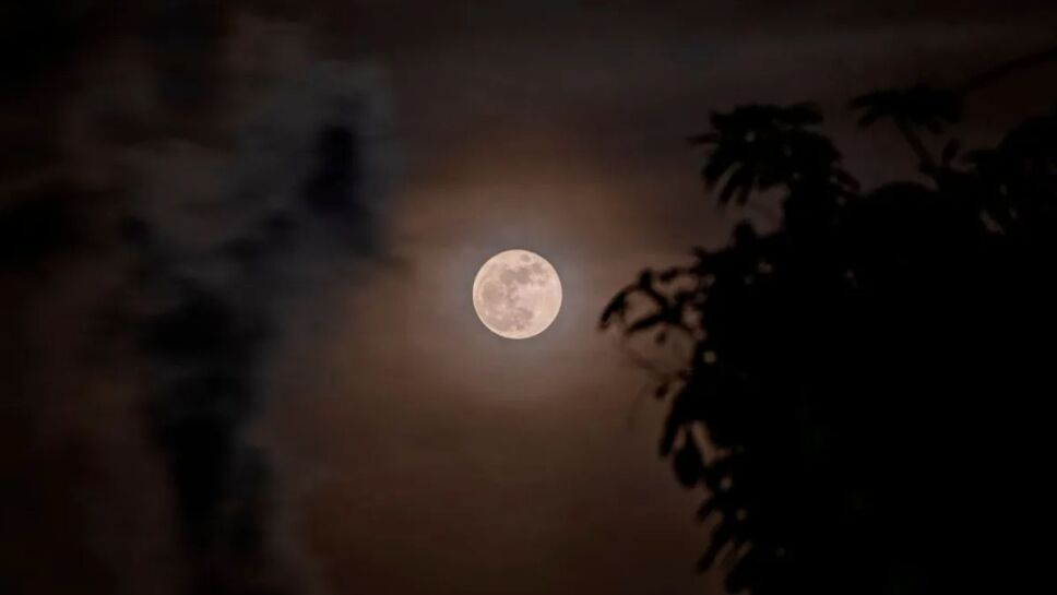 FOTOS: Así se vio la superluna de Fresa.jpg