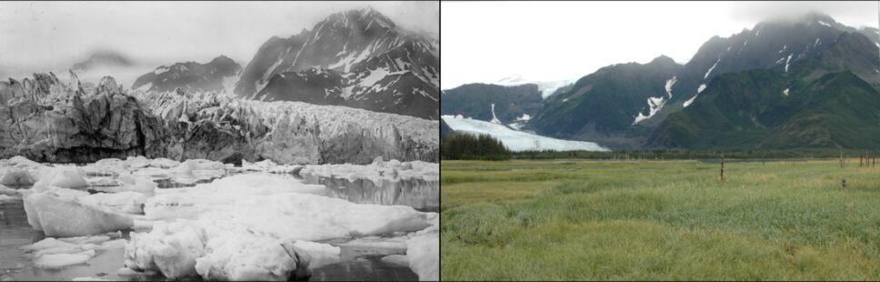 Glaciar Pedersen.png