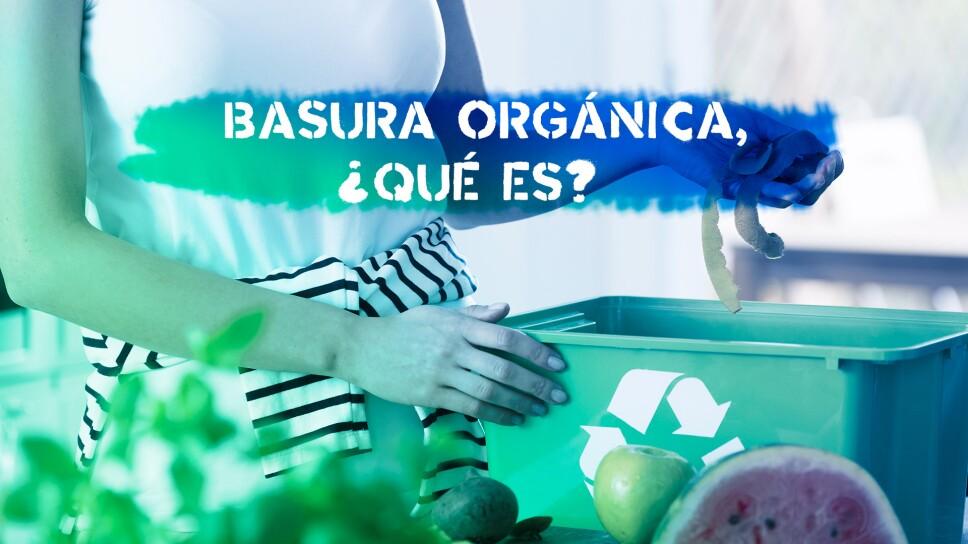 Basura orgánica, ¿qué es?