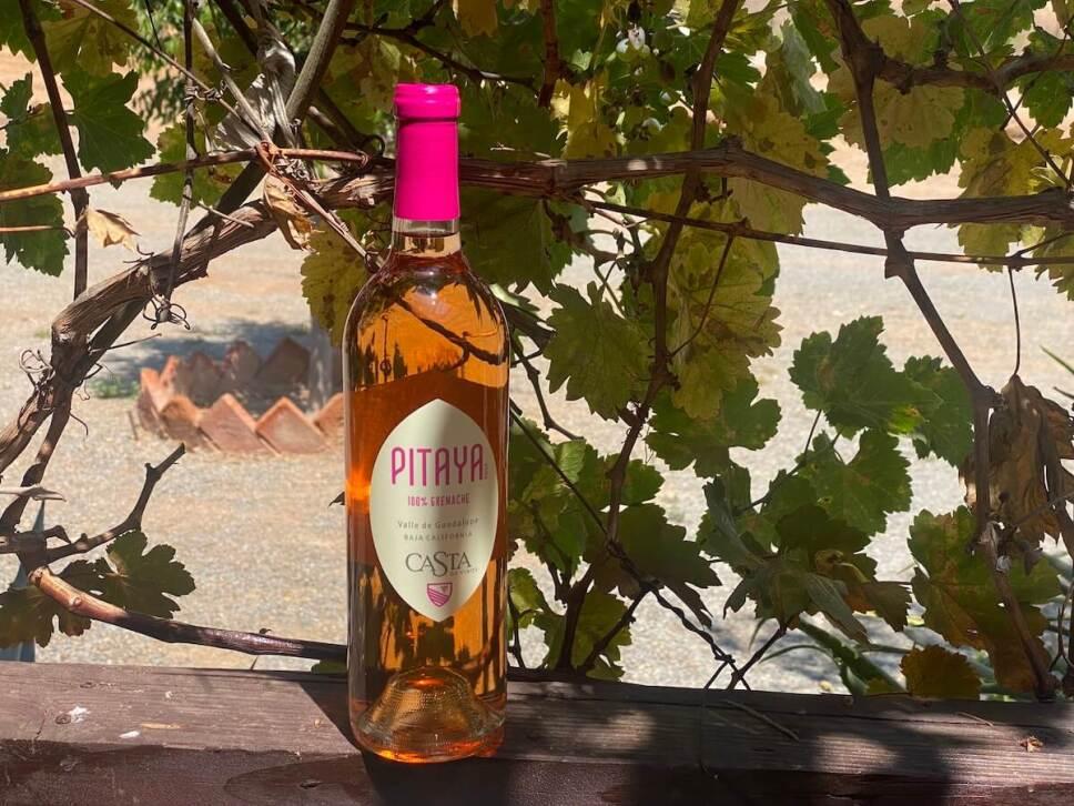 vino rosado Pitaya Grenache