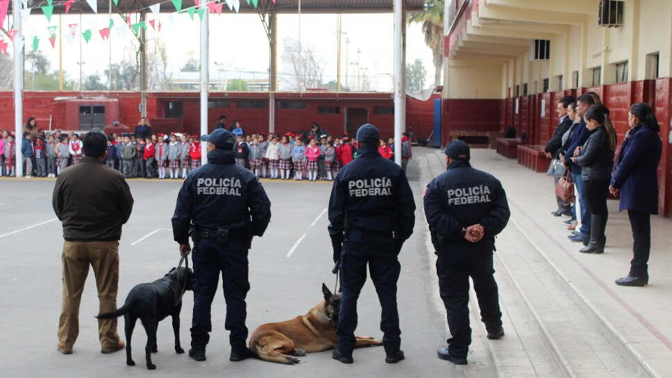 """Federal police officers with sniffer dogs visit a school as part of an operation called """"Safe Backpack"""", organized by local authorities after a boy shot a teacher and wounded several students in a private school, in Torreon"""