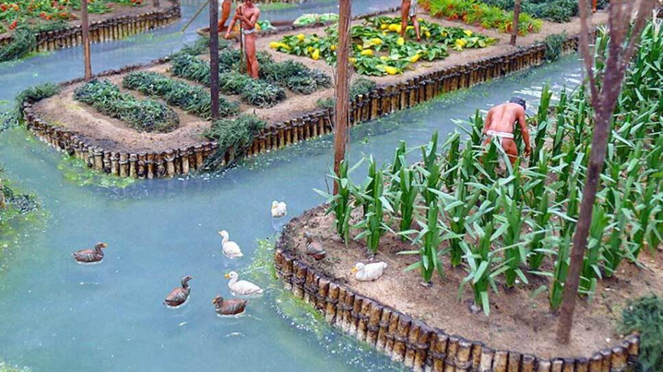 Chinampas maquette
