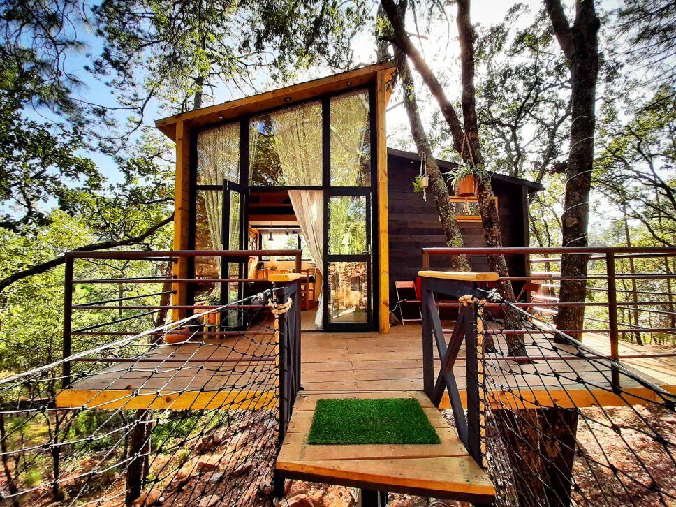 Casa del arbol
