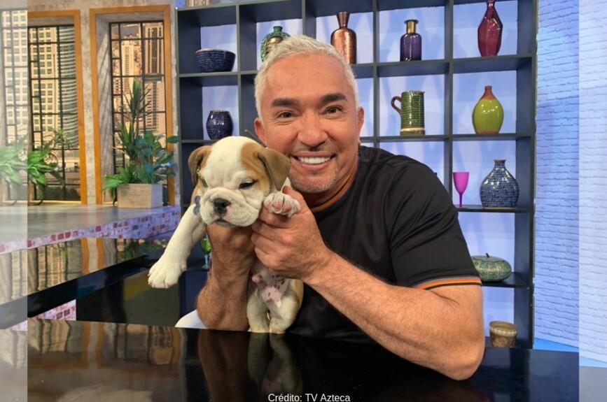 Qué gusto tener en Todo un Show a César Millán, el encantador de perros.