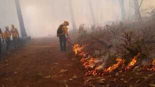 incendios-méxico.jpg
