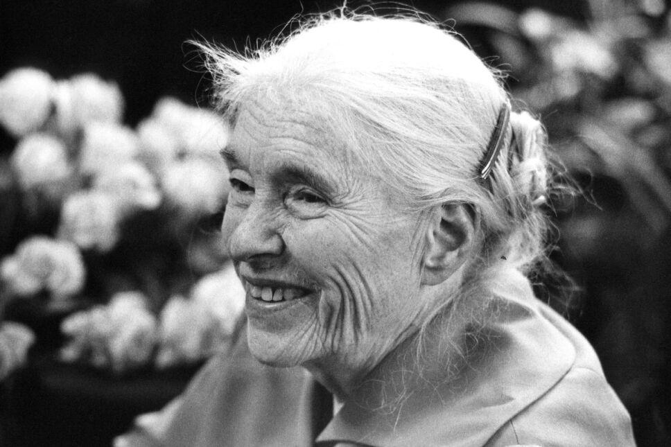 Anna Seghers, escritora antifascista y feminista, líder del exilio alemán en México