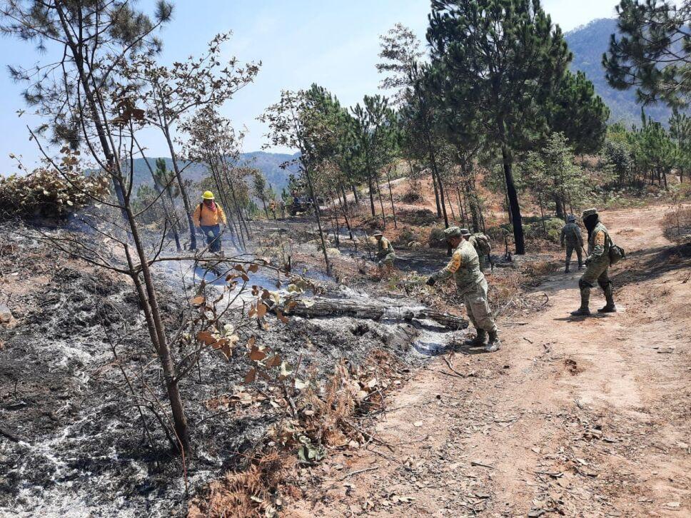 Sofocado incendio forestal en Ciudad Hidalgo  (3).jpg