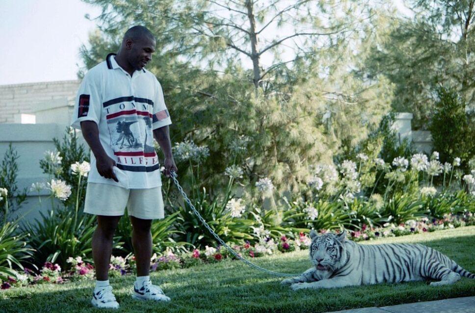 Mike Tyson y sus exóticos Tigres