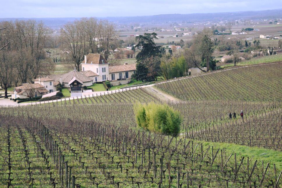 Vignobles Bordeaux Francia