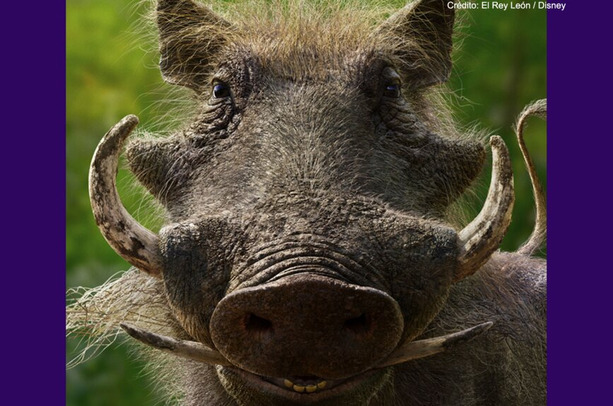 Seth Rogen es Pumba