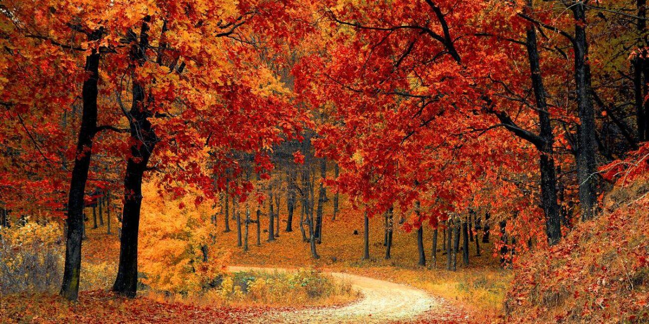 ¿Qué ocurre en la Tierra durante el equinoccio de otoño?