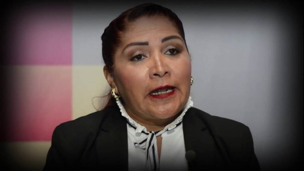 No frenará COVID-19 comercio informal porque golpeará más el bolsillo que su salud: María Rosete
