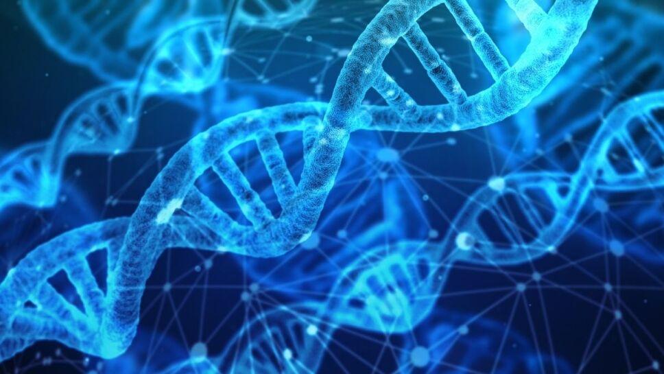 Peso, ADN humano B.jpg