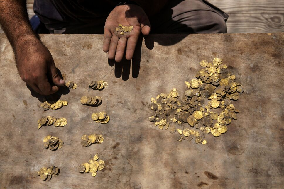 Israeli archaeologist Shahar Krispin counts gold coins, said by the Israel Antiquities Authority to date to the Abbasid dynasty, after its discovery at an archaeological site in Central Israel