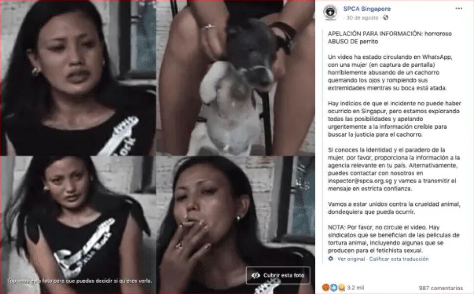 Mujer apaga cigarro en los ojos de un perrito y le rompe las patas