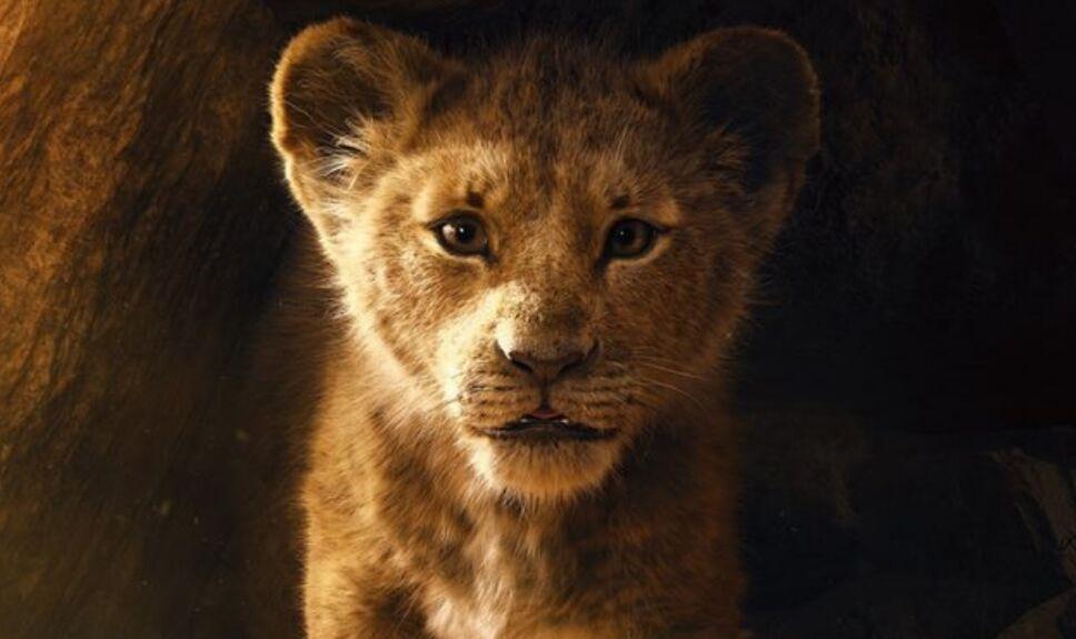 Rey león live action kidsiete