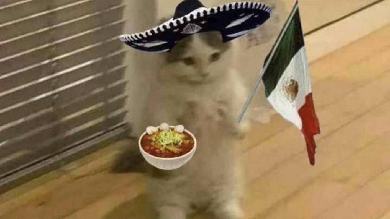 2. Memes Mexico Brasil .jpg