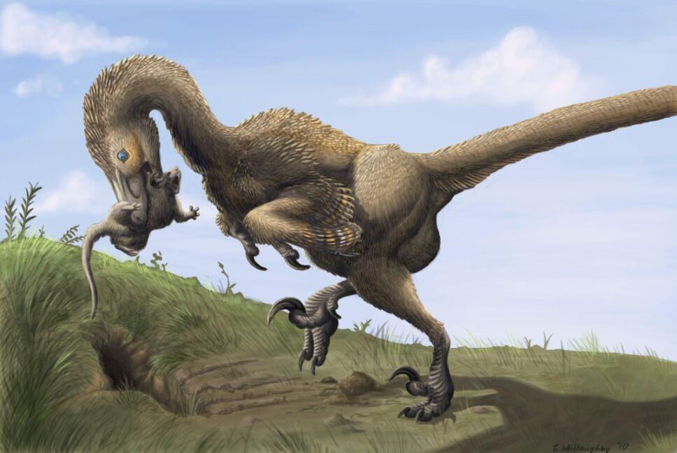 Dinosaurios, México 3.jpg