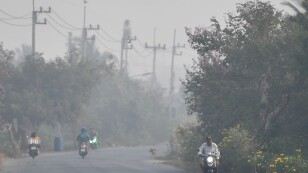 A road is seen with smog next to a sugar cane burnt plantations in Suphan Buri province, north of Bangkok, Thailand