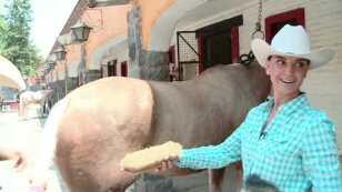 Lupita Jones deja la belleza por cuidar caballos