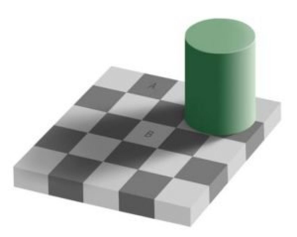 Ilusión óptica, qué es, por qué B.jpg